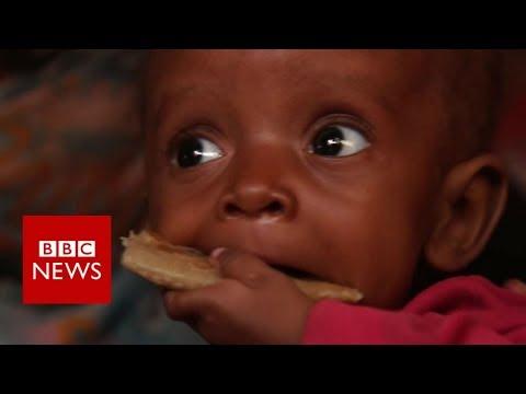 Yemen: A 24-hour walk to safety - BBC News