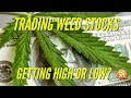 Too Late to Invest In The Best Weed Stocks in 2018 & 2019?