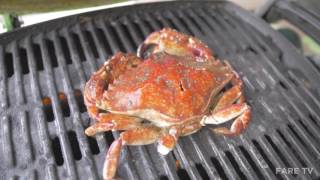 STOKED - S1E3- BBQ CRAB TACOS @ BELCARRA REGIONAL PARK