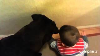 клип как дети занимаются с собакой