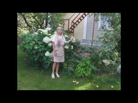 видео: Прогулка по моему саду