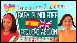 BILINGUAL SONG ♫♪ BABY BUMBLEBEE / PEQUEÑO ABEJÓN ♫♪ EN INGLÉS Y ESPAÑOL