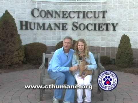 CT Humane Pet Adoption