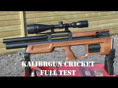 REVIEW: Kalibrgun Cricket Air Rifle - The Truth