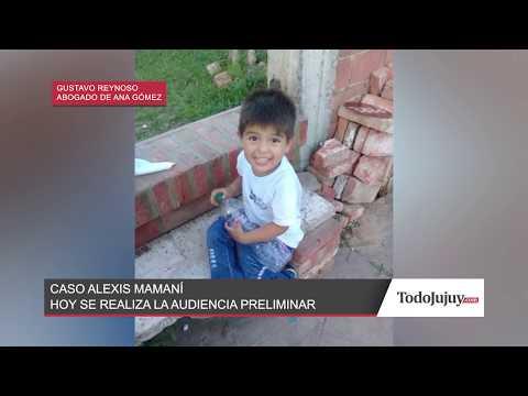 Caso Alexis Mamaní: la defensa de Ana Gómez pide la nulidad de su declaración