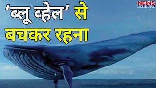 India ranks no. 1 for highest Blue Whale related searches worldwide, says Google data