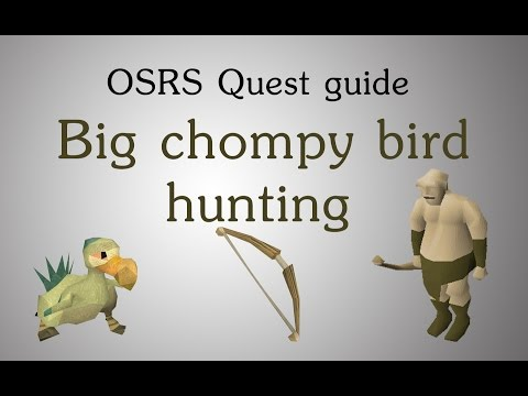 [OSRS] Big Chompy Bird Hunting Quest Guide