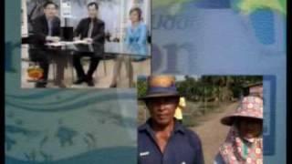 Thailand waste water treatment and prawns rice fields etc