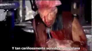 Rammstein Mein Teil Sub Español Live At Hurricane Festival 2013