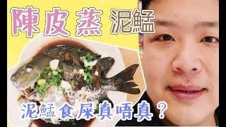【Daddy Cook 我要做廚神】-【食譜】 - 陳皮蒸泥鯭   泥鯭食屎真唔真?recipes