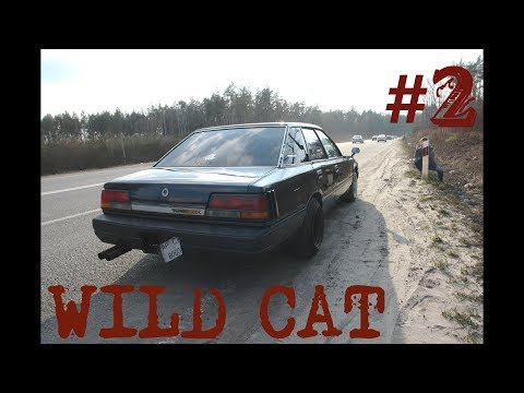 WILD CAT#2.ОТОРВАЛИ ГЛУШИТЕЛЬ. Рихтуем крыло. Ставим ДИСКИ.