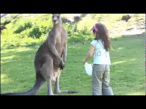 Lily M 릴리 M and family at Gumbuya Park Australia