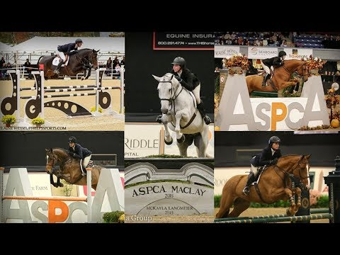 Equitation - An American Tradition Of Excellence