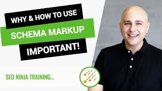 Why & How To Add Schema To Your WordPress Website For Better SEO & Visibility thumbnail