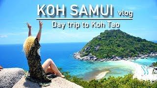 Koh Samui VLOG 2 - Day trip to Koh Tao