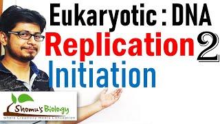 DNA replication in eukaryotes 2 | replication Initiation