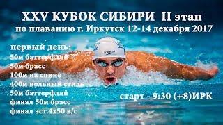 XXV КУБОК СИБИРИ II этап, г. Иркутск, 12-14 декабря 2017 день первый