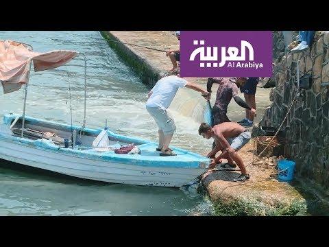 سمعتنا حملة لبنانية لتنطيف الشواطئ  - نشر قبل 6 ساعة