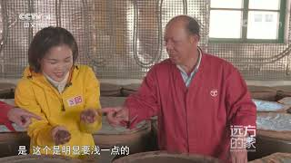 [远方的家]大运河(58) 一滴独流醋 十里运河香  CCTV中文国际 - YouTube