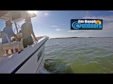 Wachapreague Flounder Eastern Shore With Jack Normand Jim Baugh Outdoors TV 2017