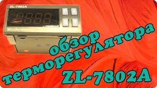 Обзор и инструкция терморегулятора для инкубатора Lilytech ZL-7802A