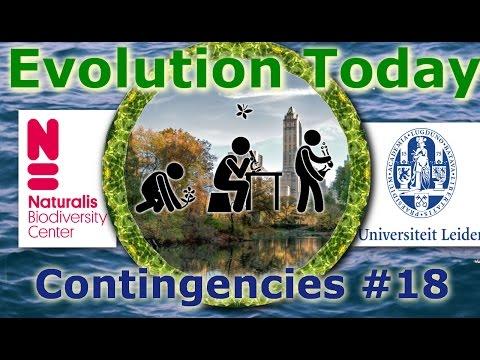 Evolution Today - 18. Contingencies