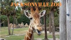 Jacksonville Zoo 2017