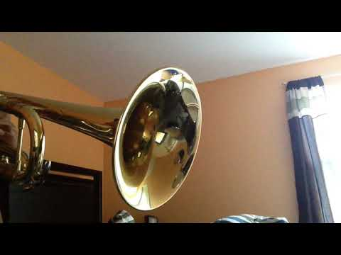 Trumpet Moves Mp3 Video Mp4 3gp Download Mp3host Info