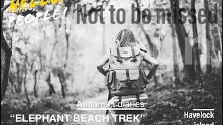 Andaman Diaries - EPISODE 01 ( Elephant beach Trek )