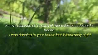 Dog Nightmare - Jack Stauber (Sub Español & Lyrics)