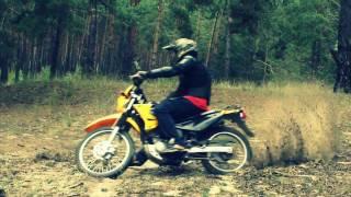 Qingqi Matador Qm200gy 200cc,Dragon Qm250gy 250cc,Suzuki Strret Magic,Acxa 1033(Photo and Video)