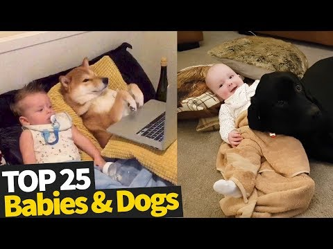 25 Cute Babies And Dogs - 2019