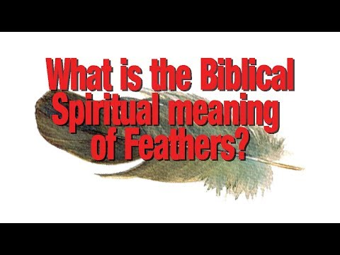 What is the Biblical spiritual meaning of feathers?