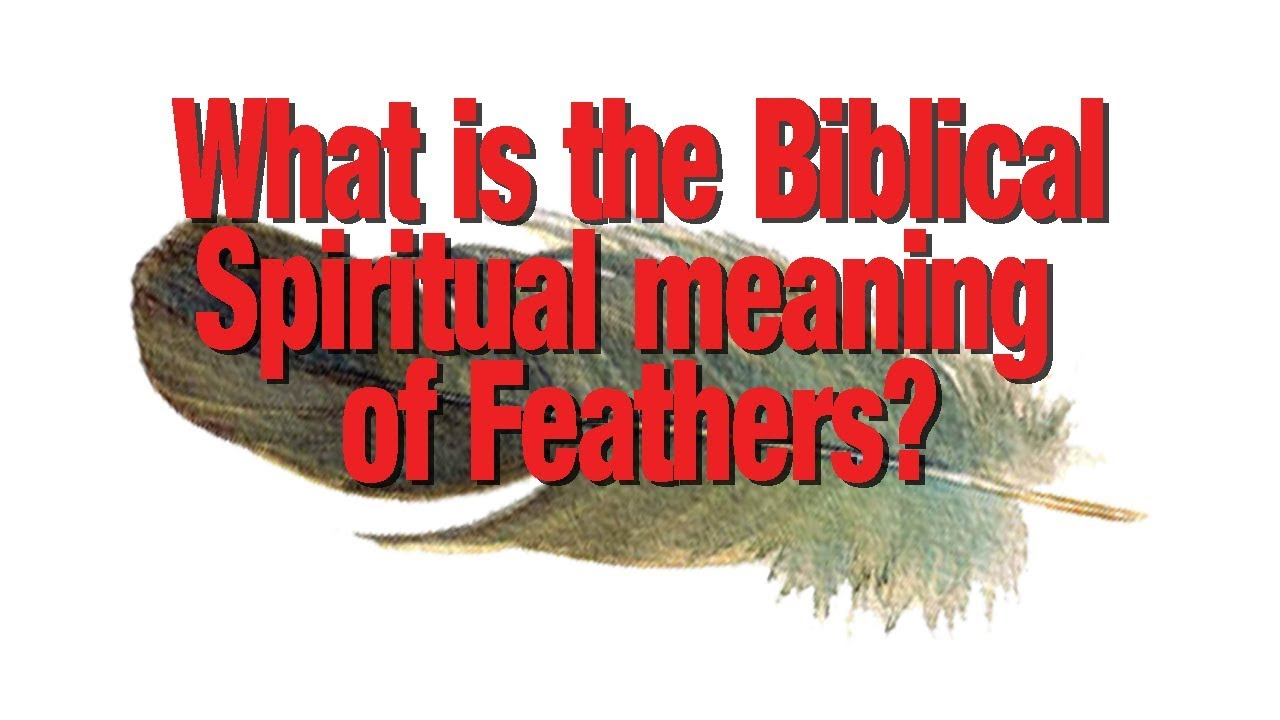 What Is The Biblical Spiritual Meaning Of Feathers Youtube