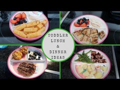 TODDLER LUNCH & DINNER IDEAS || WHAT MY FUSSY TODDLER EATS IN A DAY