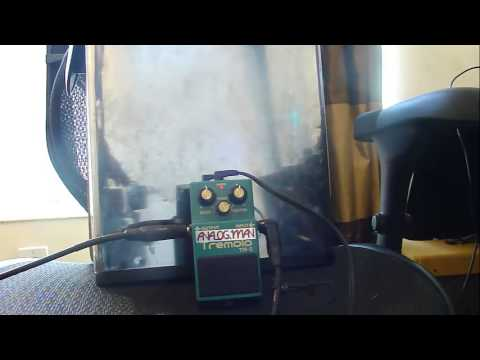 Analogman TR-2 Review