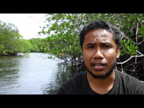 Pulau Kumo, Halmahera Utara