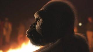 Scobel - Evolution - Von den Anfängen bis in die Zukunft