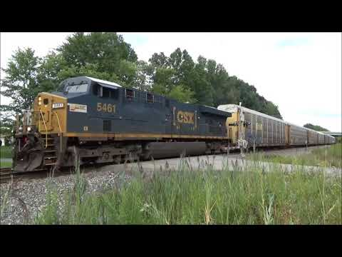 TOTALLY UNEXPECTED - CSX Seaboard System Sticker Unit #5461 Leading Q299 - Newton Falls OH Aug 2017