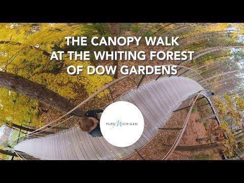 360-degree Canopy Walk at The Whiting Forest of Dow Gardens | Pure Michigan