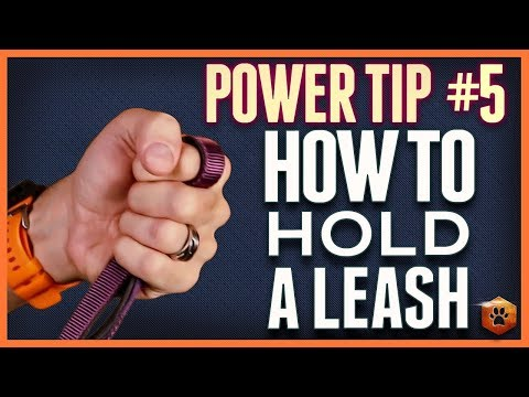 how-to-hold-a-leash---use-a-fingerlock-or-thumblock-anchor