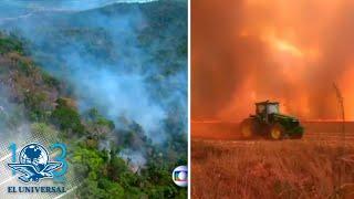 Arde el Amazonas; estados amazónicos declaran situación de emergencia