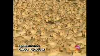 Andradina na novela O Rei do gado