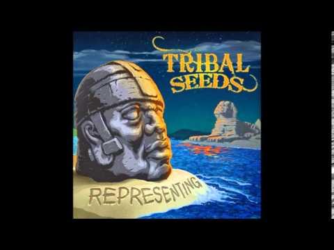 Tribal Seeds- Representing Feat  Vaughn Benjamin (Midnite) Representing 2014 )