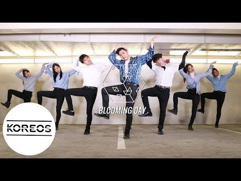 [Koreos] EXO-CBX 엑소 (첸백시) - Blooming Day 花요일 Dance Cover 댄스커버