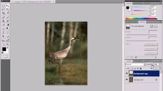 Эффект отражения в Photoshop CS4 (3/5)