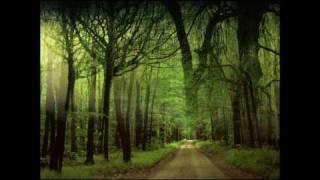 Dan Spataru - Drumurile noastre