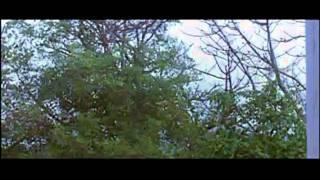 ae-jagdamba-mayee-full-song-bandhan-toote-na