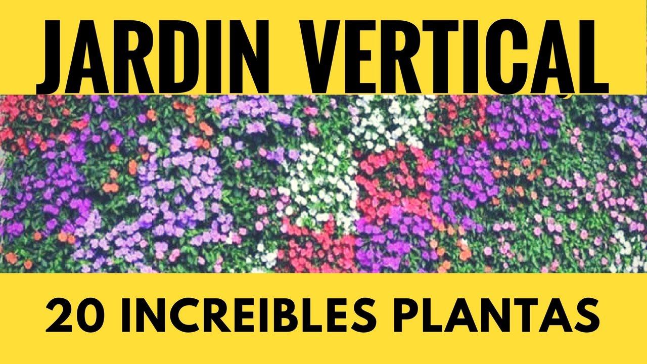 Plantas De Jardin Vertical Plantas De Sol Y Sombra Para Jardin Exterior Interior Distintas Especies