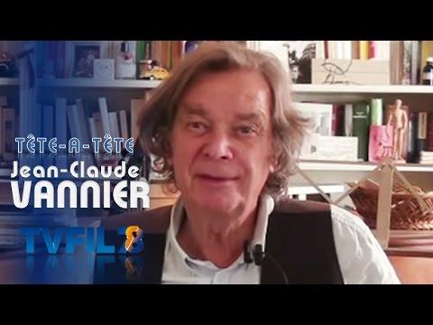 tat-avec-jean-claude-vannier-musicien
